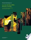 Descargar el libro libro Contextos Paleoeconómicos Y Paleoecológicos De Los Cazadores Recolectores Del Magdaleniense Medio Antiguo Y Evolucionado De La Cueva De Las Caldas (oviedo, Asturias)