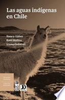 Descargar el libro libro Las Aguas Indígenas En Chile