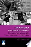 Descargar el libro libro Los Tecuanes Danzan En La Nieve