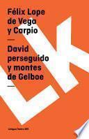 Descargar el libro libro David Perseguido Y Montes De Gelboe