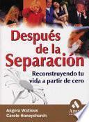 libro Despues De La Separacion