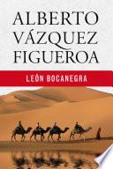 Alberto Vazquez Figueroa