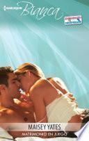 Descargar el libro libro Matrimonio En Juego
