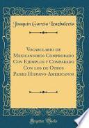 Descargar el libro libro Vocabulario De Mexicanismos Comprobado Con Ejemplos Y Comparado Con Los De Otros Paises Hispano Americanos (classic Reprint)
