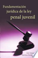Descargar el libro libro Fundamentacion Juridica De La Ley Penal Juvenil