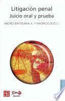Descargar el libro libro Litigación Penal