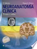 libro Neuroanatoma Clnica / Clinical Neuroanatomy