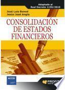 Descargar el libro libro Consolidación De Estados Financieros
