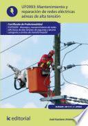 Descargar el libro libro Mantenimiento De Redes Eléctricas Aéreas De Alta Tensión. Elee0209