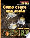 Descargar el libro libro Como Crece Una Arana = A Spiderling Grows Up