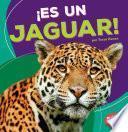 Descargar el libro libro ¡es Un Jaguar!