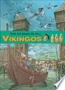 Descargar el libro libro Vikingos