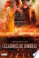 libro Ciudad De Los ángeles Caídos