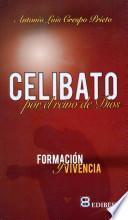 Descargar el libro libro Celibato Por El Reino De Dios
