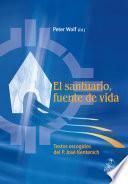 Descargar el libro libro El Santuario Como Fuente De Vida