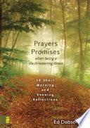 Descargar el libro libro Oraciones Y Promesas